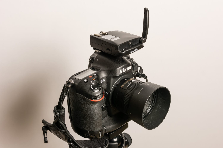 PocketWizzard Flex TT5, Test Hypersync Elinchrom D-Lite RX One, (Foto copyright - Frank Weber - Berlin - www.fotologbuch.de)