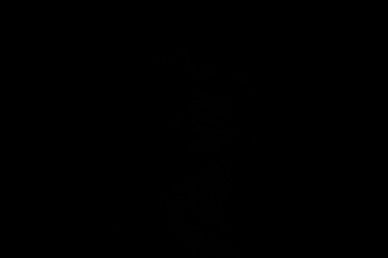 Test Lichtabfall Blitzlicht und Entfernung - Check ohne Blitz, (Foto copyright - Frank Weber - Berlin - fotologbuch.de)