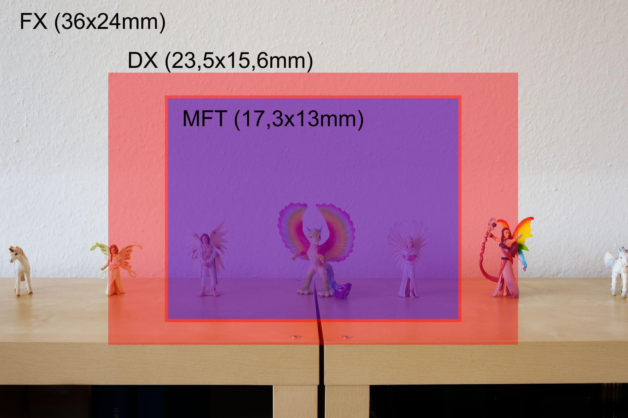 Sensor Größen Vergleich FX/DX/MFT, (Foto copyright - Frank Weber - Berlin - fotologbuch.de)