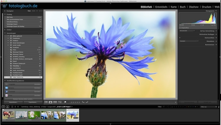 Lightroom Video Tutorial - Beschnitt auf Pixel, (Foto copyright - Frank Weber - Berlin - fotologbuch.de)