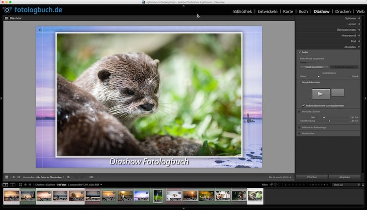 Lightroom Video Tutorial - Diashow erstellen, (Foto copyright - Frank Weber - Berlin - fotologbuch.de)