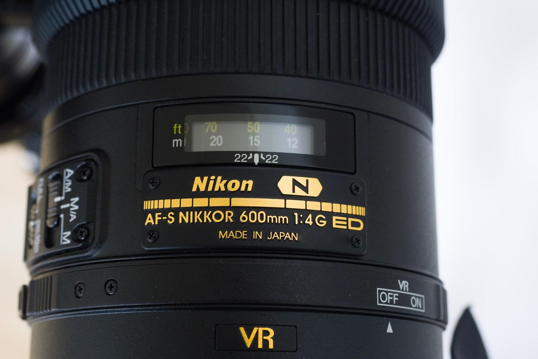 Nikon AF-S 600mm 1:4G VR2 , (Foto copyright - Frank Weber - Berlin - fotologbuch.de)