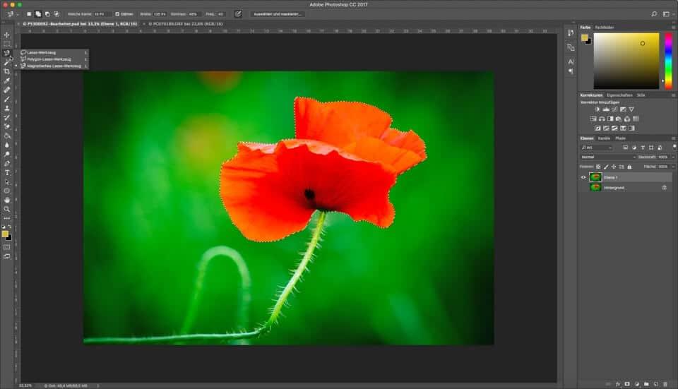 Fotologbuch lernt Photoshop - Auswahlwerkzeuge - Lasso, Polygonlasso, magnetisches Lasso, (Foto copyright - Frank Weber - Berlin - fotologbuch.de)
