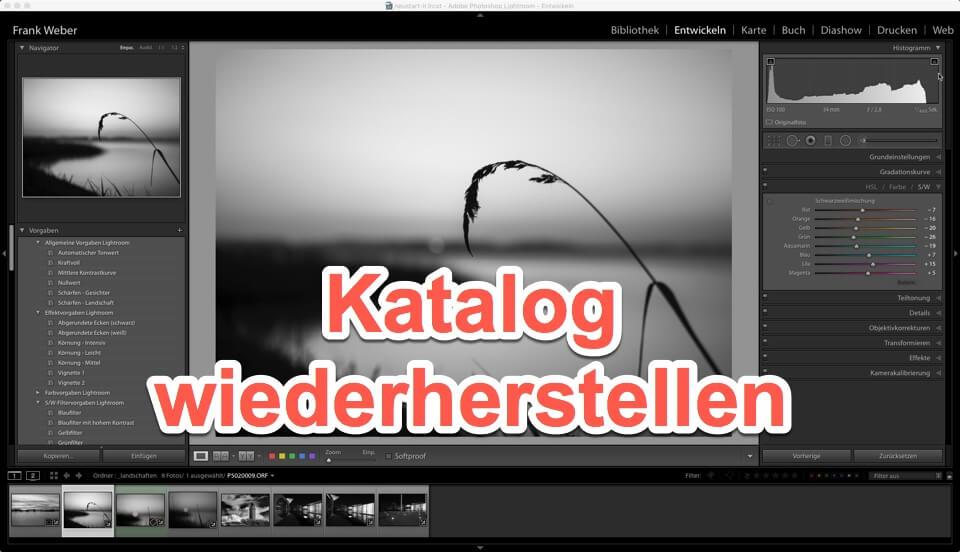 Lightroom - Quicktipp Katalog defekt - aus Backup wieder herstellen, (Foto copyright - Frank Weber - Berlin - fotologbuch.de)