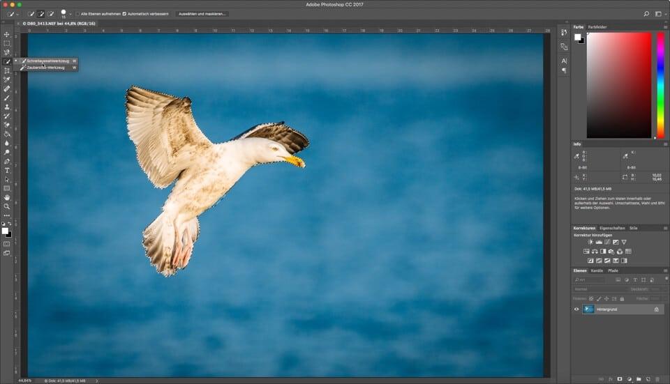 Fotologbuch lernt Photoshop - Auswahlwerkzeuge - Das Schnellauswahlwerkzeug, (Foto copyright - Frank Weber - Berlin - fotologbuch.de)