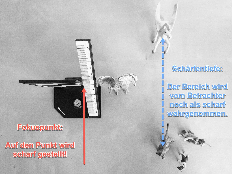 """Blogbeitrag """"Was ist Schärfentiefe?""""- Blick von oben, (Foto copyright - Frank Weber - Berlin - fotologbuch.de)"""