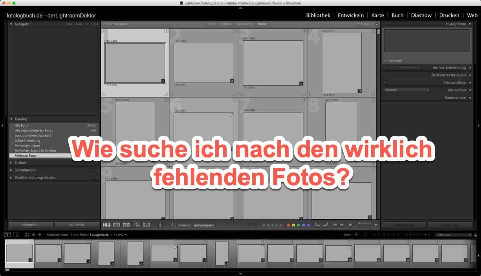 Lightroom Expertentipp - Auf der Suche nach den wirklich fehlenden Fotos ..., (Foto copyright - Frank Weber - Berlin - fotologbuch.de)