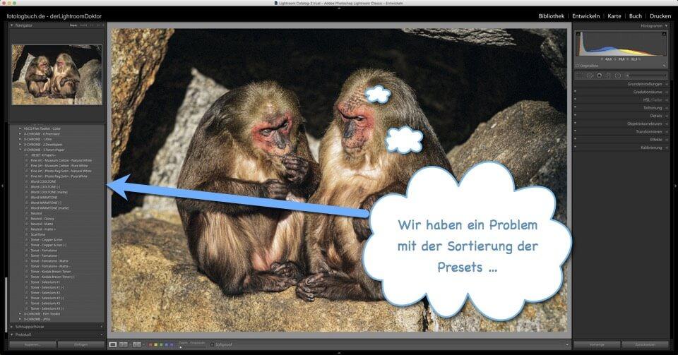Lightroom Quicktipp - Sortierung der Presets nach Update Lightroom 7.3, (Foto copyright - Frank Weber - Berlin - fotologbuch.de)