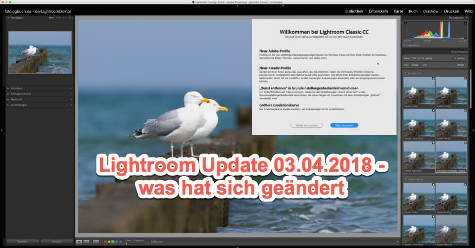 Lightroom - Quicktipp - Update Info 03.04.2018 für Lightroom Classic CC, (Foto copyright - Frank Weber - Berlin - fotologbuch.de)