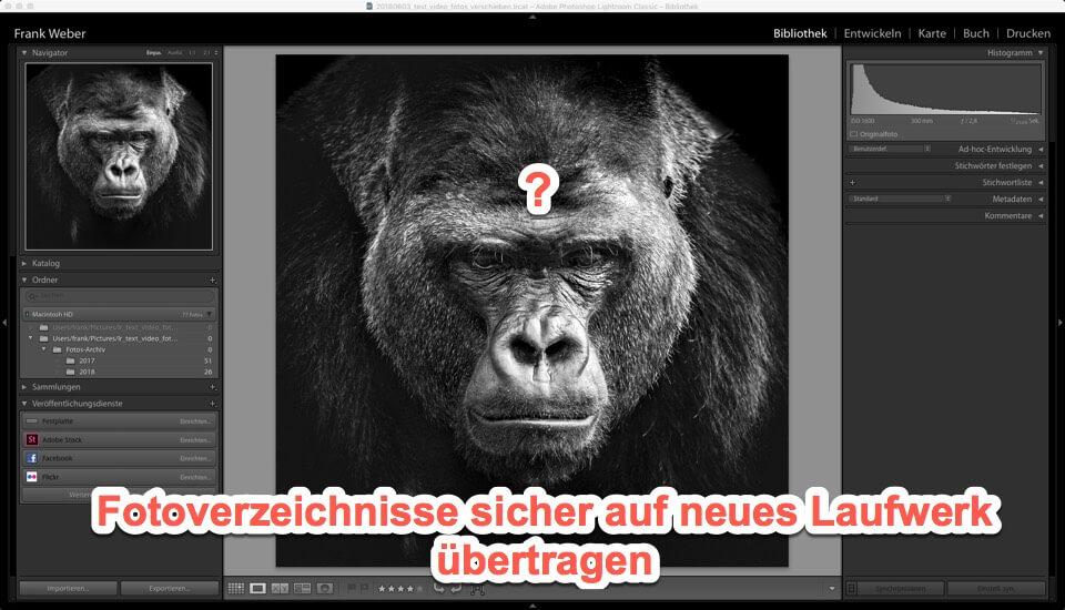 Lightroom Quicktipp - Fotoverzeichnisse sicher auf neues Laufwerk übertragen, (Foto copyright - Frank Weber - Berlin - fotologbuch.de)