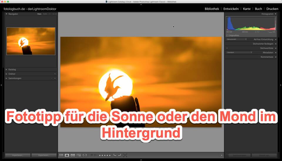 Fototipp für die Sonne oder den Mond im Hintergrund, (Foto copyright - Frank Weber - Berlin - fotologbuch.de)