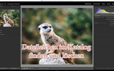 Lightroom Expertentipp - Dateileichen im Katalog finden und löschen, (Foto copyright - Frank Weber - Berlin - fotologbuch.de)