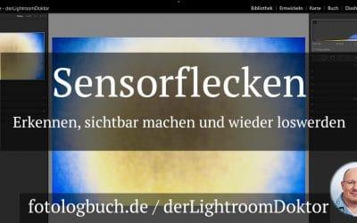 Sensorflecken - Erkennen, sichtbar machen und wieder loswerden, (Foto copyright - Frank Weber - Berlin - fotologbuch.de)