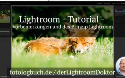 Lightroom Tutorial - Vorbemerkungen und das Prinzip Lightroom, (Foto copyright - Frank Weber - Berlin - fotologbuch.de)