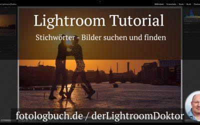 Lightroom Tutorial - Stichwörter - Bilder suchen und finden