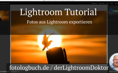 Lightroom Tutorial - Fotos aus Lightroom exportieren