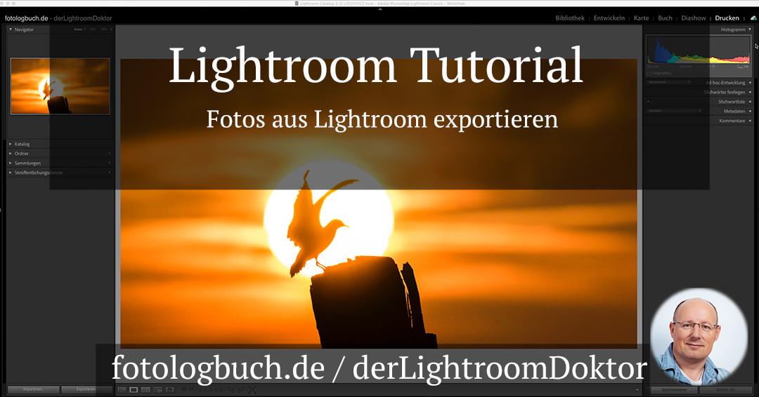 Lightroom Tutorial – Fotos aus Lightroom exportieren