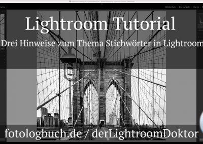 Lightroom Tutorial – Drei Hinweise zum Thema Stichwörter in Lightroom