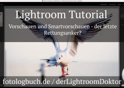 Lightroom Tutorial – Vorschauen und Smartvorschauen, der letzte Rettungsanker?