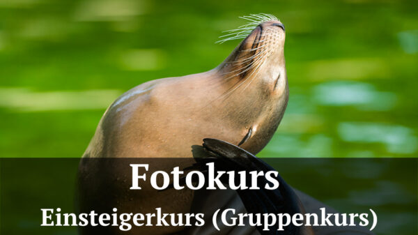 Fotologbuch - Fotokurs für Einsteiger und Anfänger, (Foto copyright - Frank Weber - Berlin - fotologbuch.de)