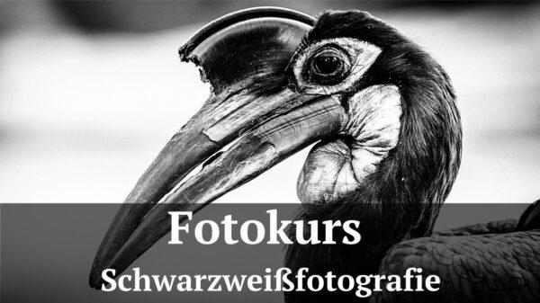Fotologbuch - Fotokurs Schwarzweißfotografie, (Foto copyright - Frank Weber - Berlin - fotologbuch.de)