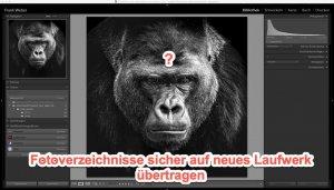 Lightroom Quicktipp –  Fotoverzeichnisse sicher auf neues Laufwerk übertragen