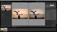 Lightroom – Quicktipp – Ein Vergleichsbild beim Bearbeiten mit anzeigen lassen