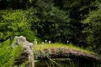Fotos – Japanischer Garten in Leverkusen