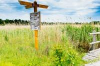 Fotos – Nationalpark Vorpommersche Boddenlandschaft (Darßer Ort)