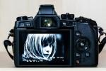 RAW Edit OM-D EM1 - Aktuelle Einstellungen Anzeige gespeichertes JPEG, (Foto copyright - Frank Weber - Berlin - fotologbuch.de)
