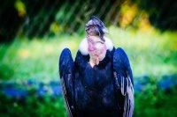 Fototipp – Einfach mal den eigenen Standpunkt ändern