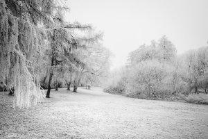 Fotos im Schnee – Die Belichtungskorrektur richtig nutzen
