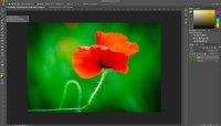 Fotologbuch lernt Photoshop – Auswahlwerkzeuge – Lasso, Polygonlasso, magnetisches Lasso
