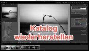 Lightroom – Quicktipp  Katalog defekt – aus Backup wieder herstellen