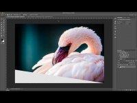 Photoshop Quicktipp – Die Auswahlfalle