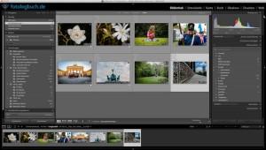 Lightroom Video Tutorial – Fotos schneller Stichwörter zuweisen