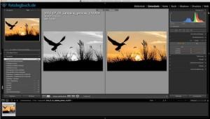Lightroom Video Tutorial – Vergleichsansicht vorher / nachher